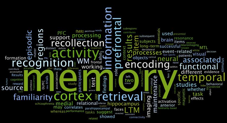 The Magic of Memory
