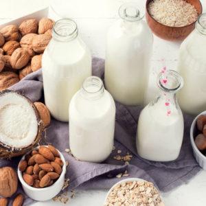 Dairy Free Taste Test!